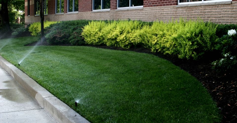 Lawn and plants being watering by an irrigation system.