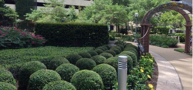 Commercial landscaping beds and walking path very well maintained.