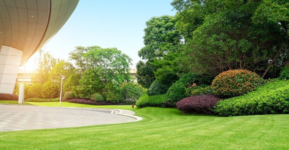 Land and landscape of a commercial facility well groomed.