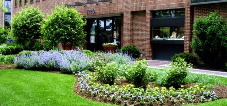 Commercial property lawn and landscape professionally maintained.