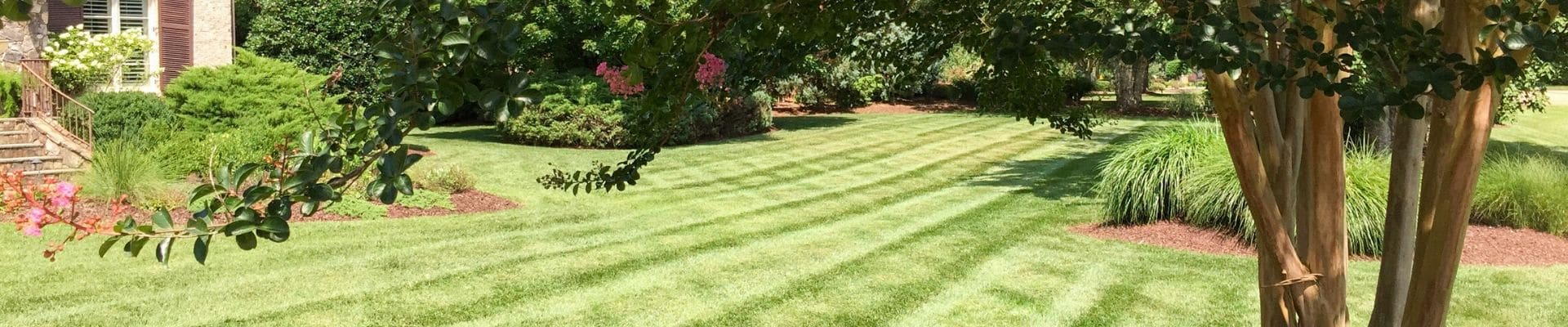 Professionally mowed grass with stripes in it and lots of landscaping beds.