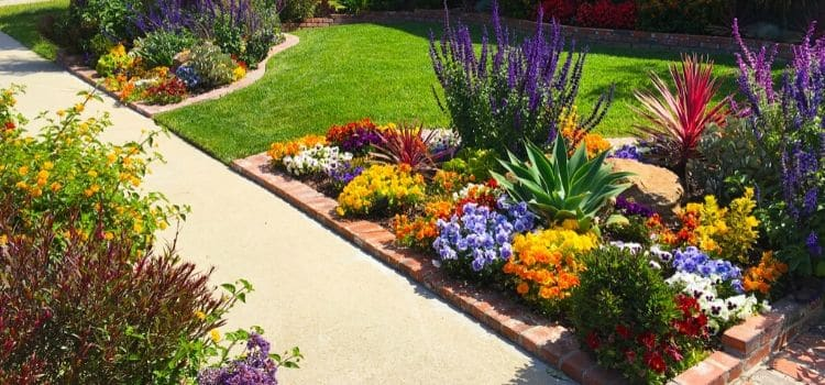 Color annual flower additions making this landscape bed warm and inviting with fall setting in.