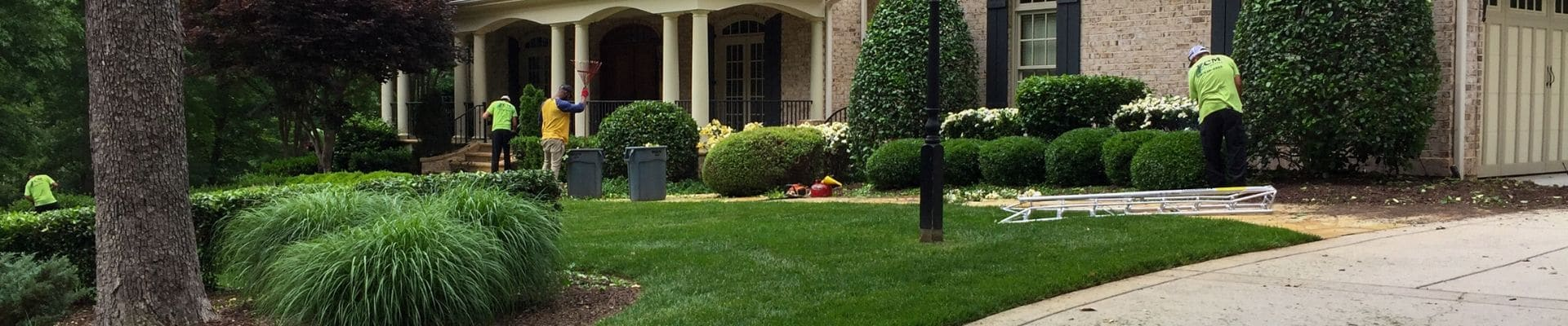 4 ECM Landscaping and Lawn Care employees working on a lawn and landscaping in North Raleigh, NC.