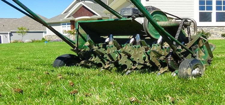 Drum style aerator in a front lawn.