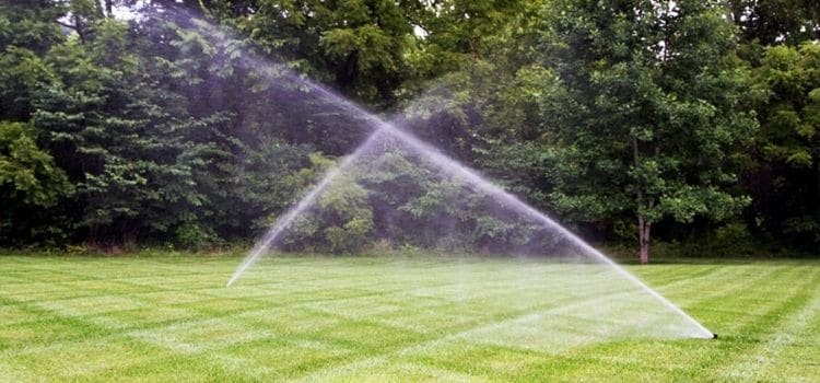 2 sprinklers watering a lawn with woods in the background.