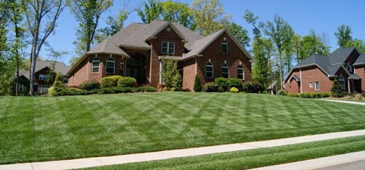 Home with a recently mowed front lawn.
