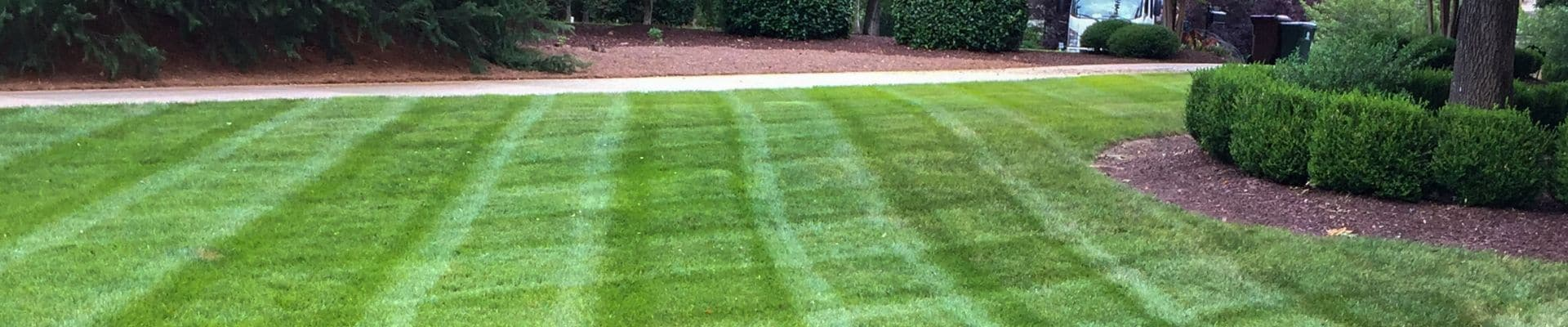 Lawn mowed by ECM Landscaping and Lawn Care.