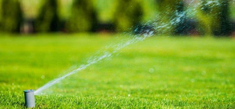 Sprinkler head watering a healthy lawn.